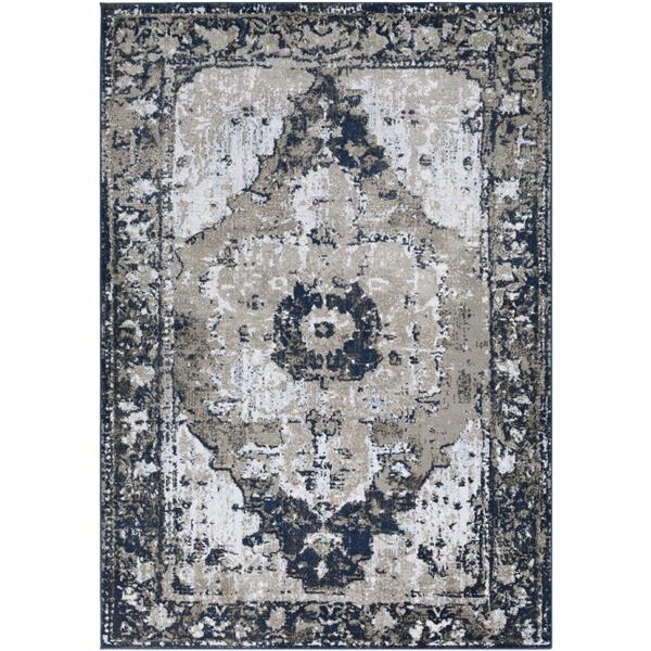Surya Soleil Updated Traditional Area Rug - 7-ft 10-in x 10-ft 6-in - Rectangular - Navy