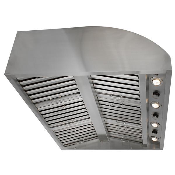 Hotte de ventilation extérieure Blaze, 42 pouces, 2000 PCM , acier inoxydable