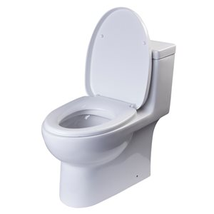 EAGO Elongated 1-Piece Toilet - Dual Flush - Standard Height - 15.75-in - White