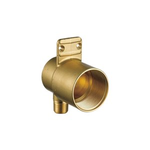 DELTA HydraChoice Wall Mount Valve