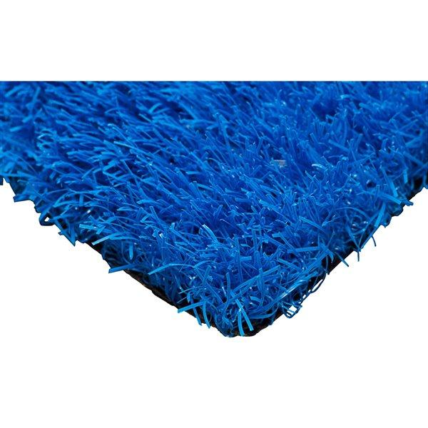 Gazon synthétique de couleur de Trylawnturf, 15 pi x 12 pi, bleu