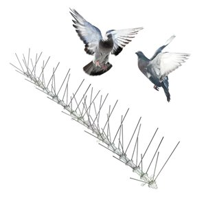 Piques anti-oiseaux en acier inoxydable de Bird-X, 24 pi