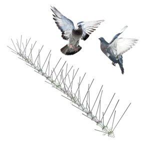 Piques anti-oiseaux en acier inoxydable de Bird-X, 10 pi