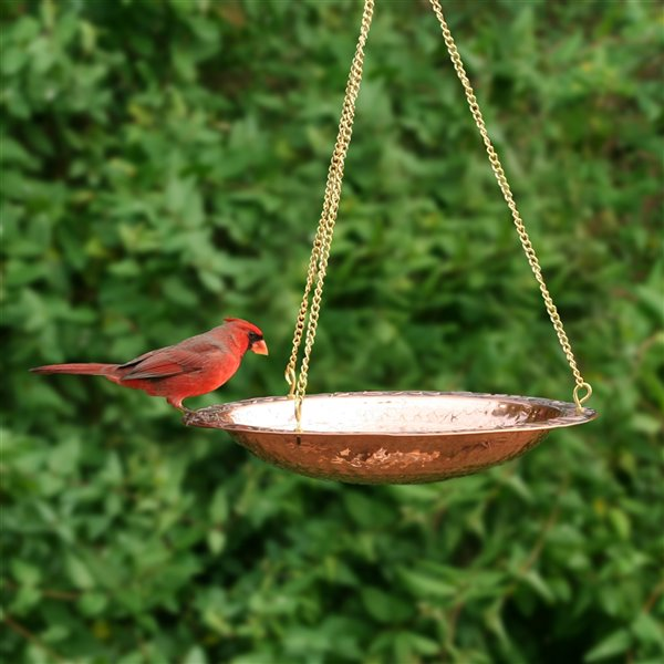 Good Directions Hanging Birdbath - Pure Copper