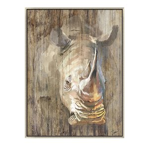 Oakland Living Wall Art - Vintage Rhino - Silver Wood Frame - 35-in x 47-in