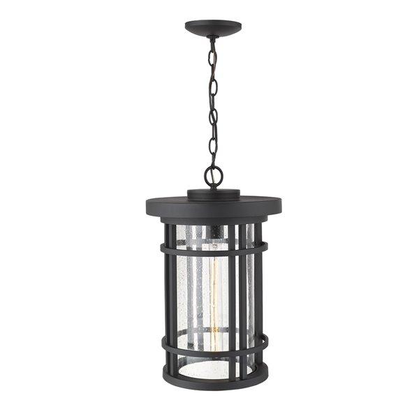 Plafonnier extérieur à 1 ampoule Jordan de Z-Lite à montage sur chaîne, 12 po x 18,75 po, noir/verre texturé