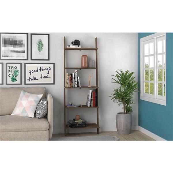 Manhattan Comfort Cooper Ladder Bookcase - 24.8-in x 72.04-in - Oak