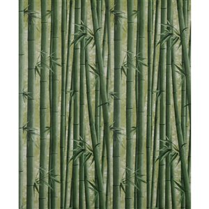 Dundee Deco Falkirk McGowen Peel and Stick Wallpaper Floral Printed Green Bamboo Shoots - 26.6 Sq. ft.