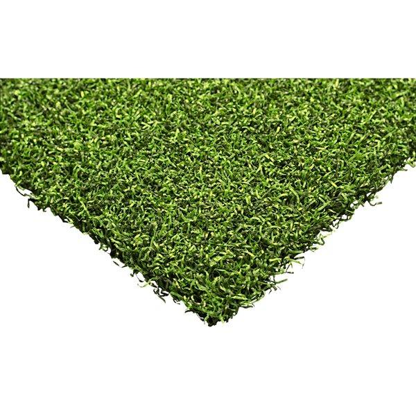 Gazon synthétique Putting Green Max de Trylawnturf, polypropylène, 15 pi x 6 pi, green