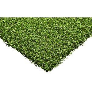 Trylawnturf Putting Green Max Synthetic Turf - Polypropylene - 10-ft x 6-ft - Green
