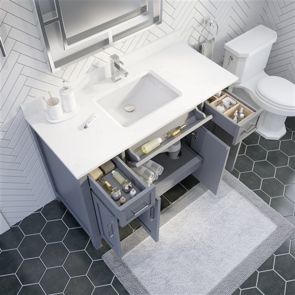 Ikou Thomas Single Sink Grey Bathroom Vanity with Power Bar & Drawer Organizer 48-in