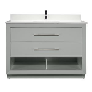 Ikou Riley Single Sink Grey Bathroom Vanity with Power Bar & Drawer Organizer 48-in