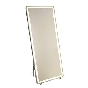 Miroir à éclairage DEL Reflections AM311 d'Artcraft Lighting, 27,5 po x 67 po, aluminium brossé