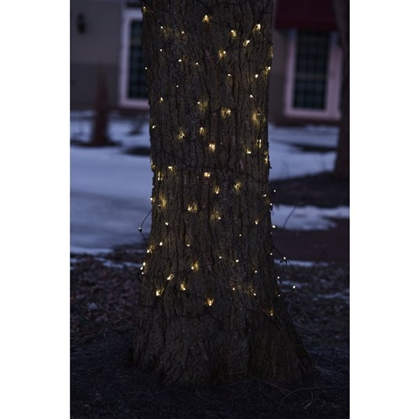 Northlight Clear LED Tree Trunk Wrap Net Style Christmas Lights - Brown Wire - 2-ft x 8-ft