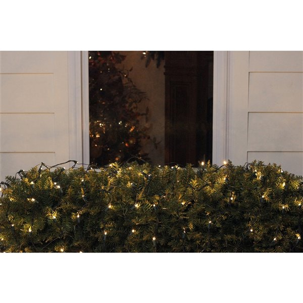 Northlight Warm White LED Wide Angle Christmas Net Lights - 4-ft x 6-ft