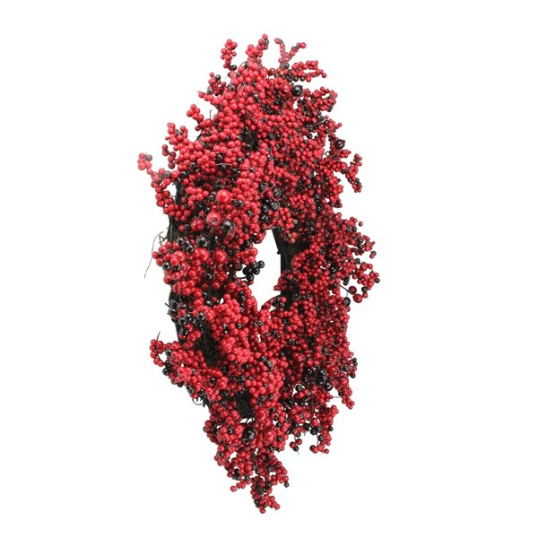 Northlight Red and Brown Artificial Berry Christmas Wreath - 22-in  Unlit