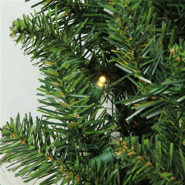 Northlight Pre-Lit Buffalo Fir Artificial Christmas Wreath - 24-in