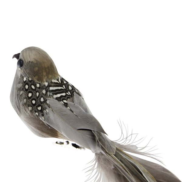 Northlight Clip-On Bird Feather Christmas Ornament Decoration - 24-in - Brown and Gray