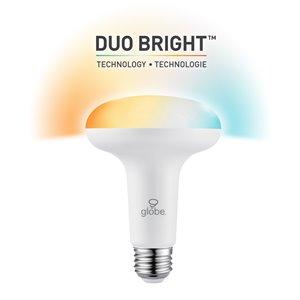 Ampoule BR30 Globe Electric (équivalent de 65 W) à température de couleur variable - DuoBright