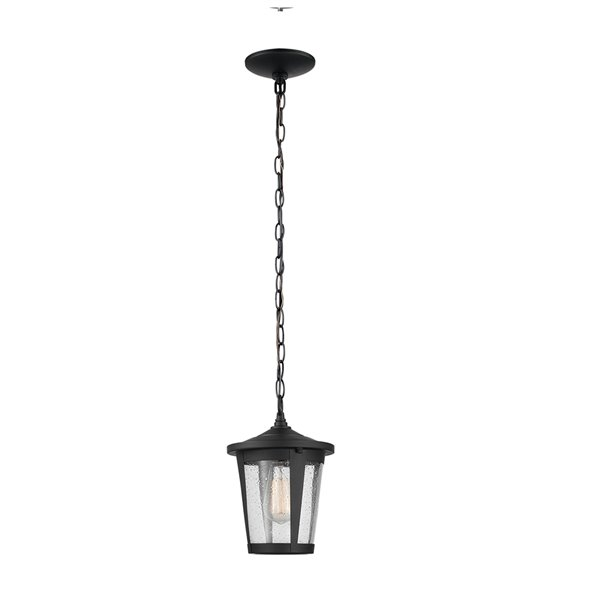 Globe Electric Augusta 1-Light Outdoor Indoor Pendant Light with Seeded Glass Shade - Matte Black