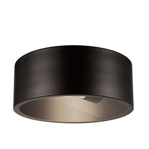 Globe Electric Teagan 1-Light Outdoor Indoor Flush Mount Ceiling Light - Dark Bronze