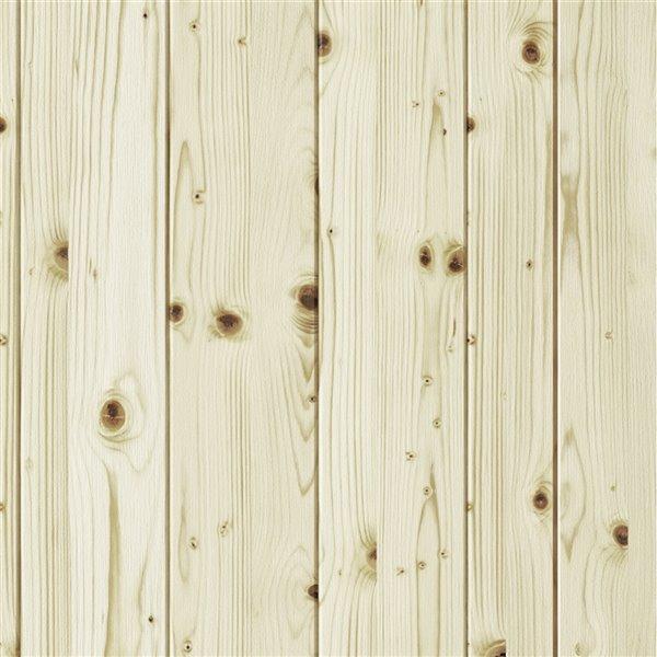 Porte de grange en bois de pin Country de Colonial Elegance, 42 po x 84 po, naturel