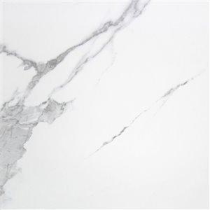Tuile porcelaine Mono Serra 24 po x 24 po Polaris Brillo 11,62 pi ca (3 mcx / boite)
