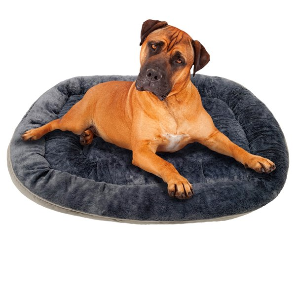 Danazoo Odin Extra Large Pet Bed - Grey - 36-in x 48-in