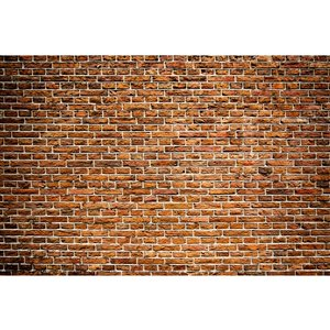 Dimex Old Brick Wall Mural - 12-ft 3-in x 8-ft 2-in