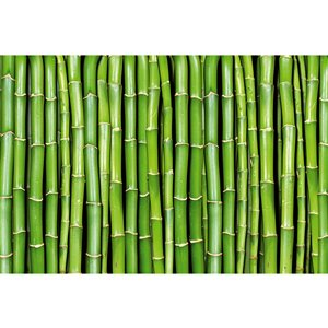 Dimex Bamboo Wall Mural - 12-ft 3-in x 8-ft 2-in