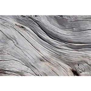Papier peint texture arbre de Dimex, 12 pi 3 po x 8 pi 2 po