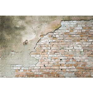 Dimex Grunge Wall Wall Mural - 12-ft 3-in x 8-ft 2-in
