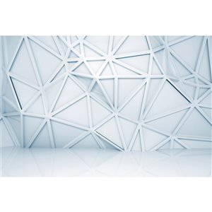 Dimex Relief Pattern Wall Mural - 12-ft 3-in x 8-ft 2-in