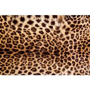 Papier peint peau de léopard de Dimex, 12 pi 3 po x 8 pi 2 po