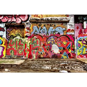 Dimex Graffiti Street Wall Mural - 12-ft 3-in x 8-ft 2-in