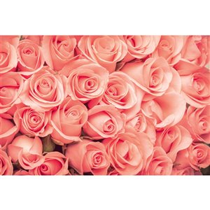 Dimex Roses Wall Mural - 12-ft 3-in x 8-ft 2-in