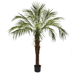 Nearly Natural Robellini Palm Tree - 6-ft - Green