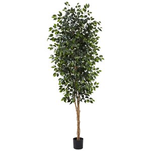 Nearly Natural Ficus Tree - 8-ft - Green