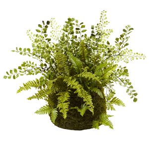 Nearly Natural Mixed Fern with Twig and Moss Basket - 13-in - Green