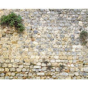 Wall Rogues Stone Wall Mural - Unpasted - 118-in x 94-in