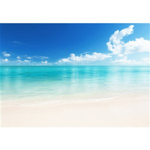 Ideal Décor The Beach Wall Mural - Unpasted - 144-in x 100-in