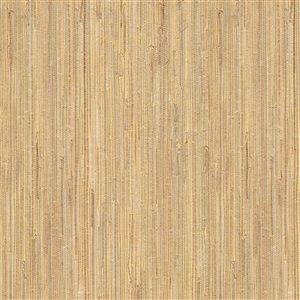 Kenneth James Jade Daria Unpasted Grasscloth Wallpaper - 72-sq. ft. - Beige