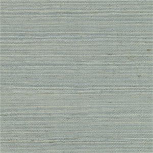 Kenneth James Canton Road Zhejiang Unpasted Grasscloth Wallpaper - 72-sq. ft. - Light Blue