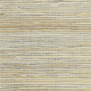 Kenneth James Canton Road Unpasted Grasscloth Wallpaper - 72-sq. ft. - Silver and Copper