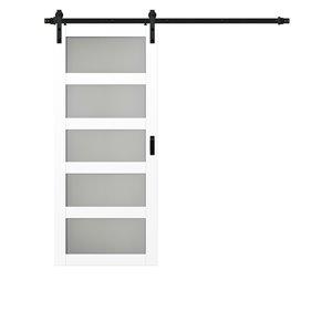 Renin 5 Lite Frosted Glass Rustic Barn Door - 36-in x 84-in - White