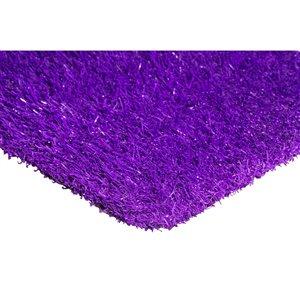 Tapis de gazon artificiel Color Turf de Trylawnturf, 15 pi x 6 pi, mauve
