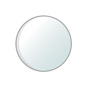 Jade Bath Dex Round Decorative Mirror - 30-in x 30-in - Polished Chrome