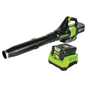 Souffleur à feuilles sans fil Greenworks Pro avec batterie lithium-ion, 80 volts, 580 pcm, 145 mi/h