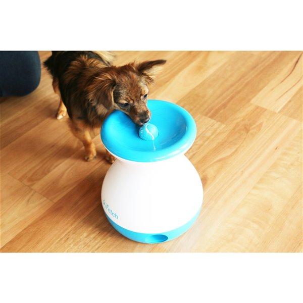 Jouet lance et rapporte pour chien Ifetch Frenzy, blanc et bleu