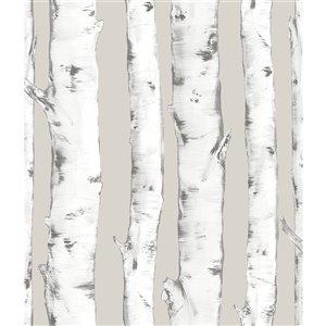 Papier peint Downy Birch Peel and Stick Wallpaper de InHome